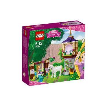 LE JARDIN DE RAIPONCE LEGO 41065
